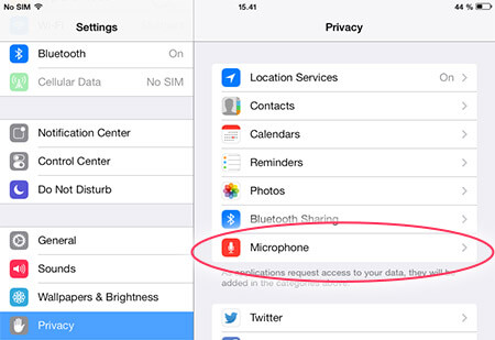 iPad/iPhone privacy settings